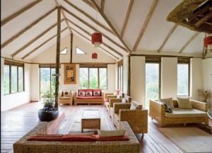 Gorilla lounge