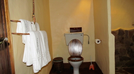 toilet gfc