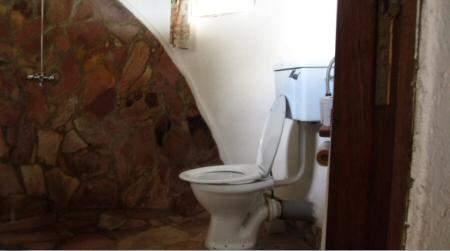 toilet-king