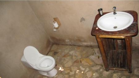 toilet wag