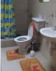 toiletee